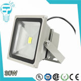 Diodo emissor de luz Floodlight de IP65 Waterpfoof Bridgelux Chip Meanwell Driver 30W