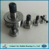 Het concurrerende Lager van de Rol van de Naald van de Fabrikant van China (reeks KRV 13-90 mm)