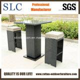 Самомоднейшая мебель штанги/компактная мебель штанги/мебель штанги (SC-A7414)