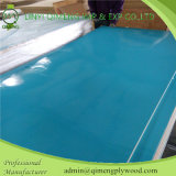 Polyester colorido Plywood para Decorative