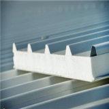 Panneau respectueux de l'environnement léger de toit de sandwich au composé ENV