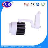 Spur-Punkt-Licht des Bekleidungsgeschäft-LED der Spur-Light/2wire 20W LED
