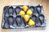 La talla y el color validan las bandejas plásticas disponibles de la pedido del cliente para el empaquetado de la fruta fresca