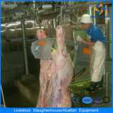Ce Halal Cattle Slaughter House Machines in Abattoir