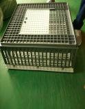Cage se pliante de transport en plastique de pigeon/caisse animale de rotation