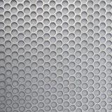 Acier inoxydable de la meilleure qualité/maille perforée galvanisée en métal pour la décoration/filtration