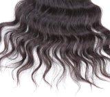 Волосы большого части 8A Remy золотистой девственницы верхней части красотки бразильские с очень конкурентоспособной ценой