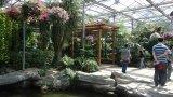 Conservatorio Eco-Facente un giro turistico della serra/coltivatore Hothouse/grande