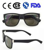 Óculos de sol plásticos da forma do homem (Y0115)