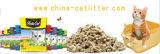 100% biodegradierbare Kiefernholz-Katze-Sänfte