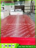 Pappel-Kern, Melamin-Furnierholz für konkretes Forwork