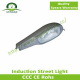 Induktion 2015 Street Light 40With50W