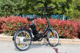 Bike Ebike 20 дюймов миниый складывая электрический с безщеточной чернотой Assist мотора