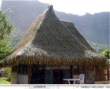 人工的な屋根ふき材料の屋根、屋根ふき材料の屋根ふき、わらぶき屋根、屋根ふき材料のタイルまたは屋根ふき材料の屋根ふきの乾いた草の屋根ふき材料Qwi-St005