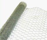 Rete metallica del ferro/rete metallica esagonali galvanizzate del pollo