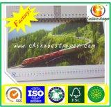 Überzogene Karten-Papier für Drucken 290g