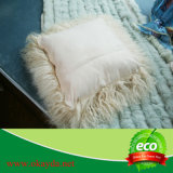 vente en gros pure de couverture de palier de fourrure de peau de moutons de couleur de 40*40cm