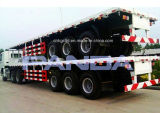 해골과 Platform Container Transport Semi Trailers