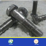 Qualité Stainless Steel 304 ou 316 Hex Bolt