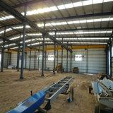 Gruppo di lavoro prefabbricato della struttura d'acciaio del fornitore professionista da vendere