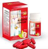 Capsule de vente chaude de Dr. Mao Lose Fat Slimming