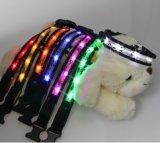 Colar de cão de Colorfull/ligação do cão/colar do animal de estimação com luzes do diodo emissor de luz
