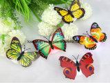 나비 LED 밤 빛, 나비 LED 빛