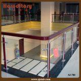 Алюминиевый стеклянный Railing для палубы и балкона (SJ-780)