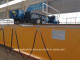 Grue à tête creuse à double poutre à grue électrique à ponton européen