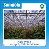農業のための低価格のポリカーボネートの温室Hidroponica