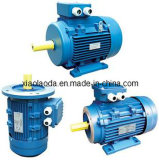 Y2 Induction Electrical Motor 63-355L