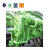 Générateur électrique de biogaz d'OIN de Ce& avec l'écran silencieux