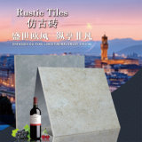 Mattonelle di pavimentazione popolari di rivestimento di lustro/Matt di alta qualità di vendita 600X600