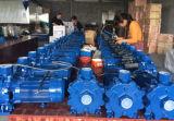 Deux turbines de pompe à l'eau Scm2-68 électrique centrifuge (2.2kw/3HP)