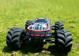 1/10 Scale Electric RC Car 4WD Télécommande Sans Brushless (Noir)