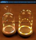 Kundenspezifische Glasabdeckung-Replik-Glasglocke für Lampe und Weihnachten