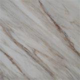 Qualidade superior e mármore branco excelente da galáxia
