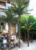 屋内か屋外の使用のための人工的なフェニックスのヤシの木の