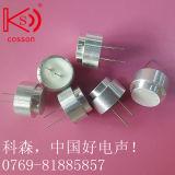 détecteur ultrasonique de sonde ultrasonique de détecteur de 16mm