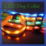 Buntes Nylon Dog Collar und LED Pet Collar für Safety Protection (DC-001)