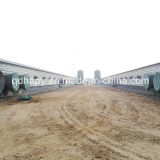 Broiler Breeding를 위한 Poultry Equipment를 가진 Prefabricated Poultry House