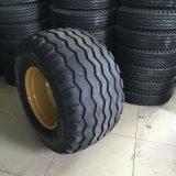 Impt 타이어 (500/50-17, 15.0/55-17, 19.0/45-17)