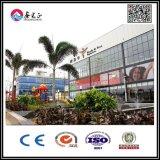 Il supermercato /Shop della struttura d'acciaio con installa il servizio (XGZ-5312)