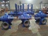 Industrielle Wasser-Bewässerung-doppelte Saugpumpe