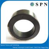 Anelli multipolari del motore del magnete del ferrito permanente