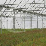 도매가 수경법은 천막 소형 온실을 증가한다