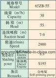 водяная помпа 2 серии 65zb тепловозная и половинный дюйм 65zb-55
