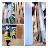 Muri divisori operabili di alluminio della Cina per lo stadio, Corridoio multiuso