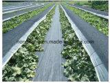 Esteira do controle de Weed da agricultura