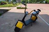 1000W de elektrische ZelfAutoped van het Saldo